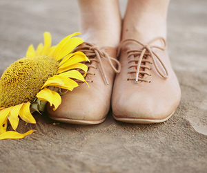 shoes, sunflower, and flowers image