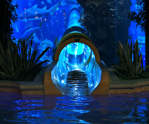 blue, slide, and cool image