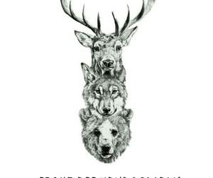 bear, courage, and deer image