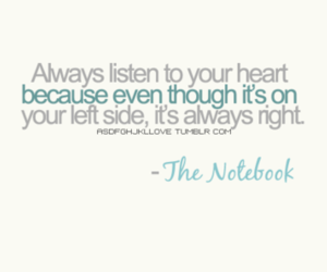 quote, heart, and the notebook image
