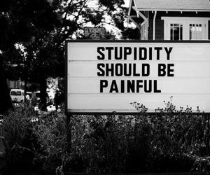 stupidity, text, and quotes image