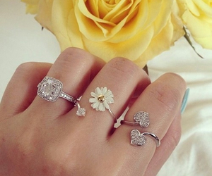 rings, flower, and beautiful image