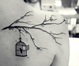 beautiful, cage, and love it image