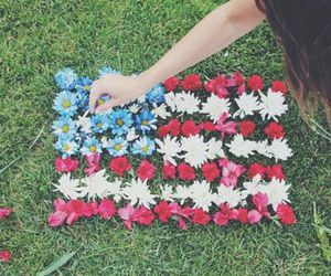 flowers, usa, and america image