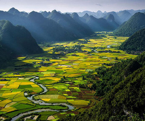 Vietnam, nature, and green image