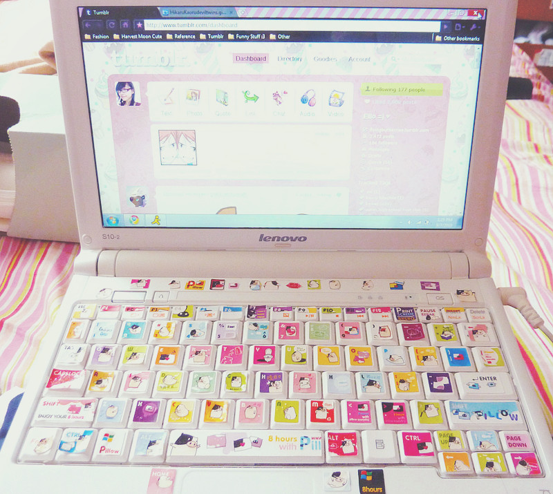 tumblr on my computer uploaded by annoyingoreenge