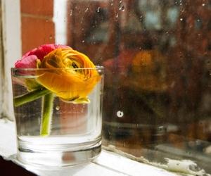 deco, flower, and orange image