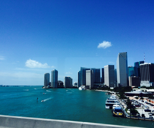 blue, Miami, and city image
