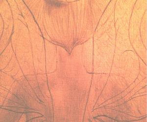art, bun, and fairy image