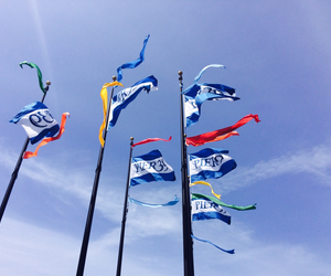 california, colorful, and flags image