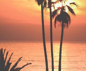 summer, sunset, and sun image
