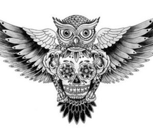 owl, skull, and tattoo image