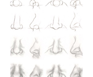 nose and how to draw image