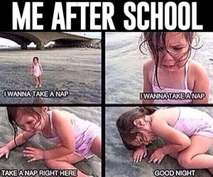 school, funny, and nap image