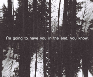 black and white, frases, and forest image