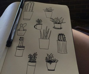 drawing, plants, and grunge image