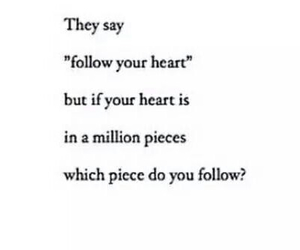 heart, quotes, and follow image