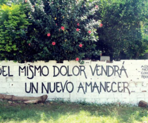 accion poetica, pain, and frases image