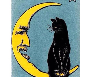 acid, moon, and cat image