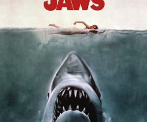 jaws and shark image