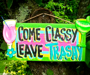 classy, trashy, and summer image