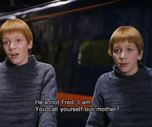 harry potter, Fred, and george image