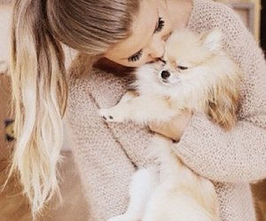 animals, blonde, and dogs image