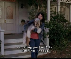 gilmore girls, paul anka, and dog image