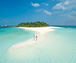 beach, summer, and Maldives image