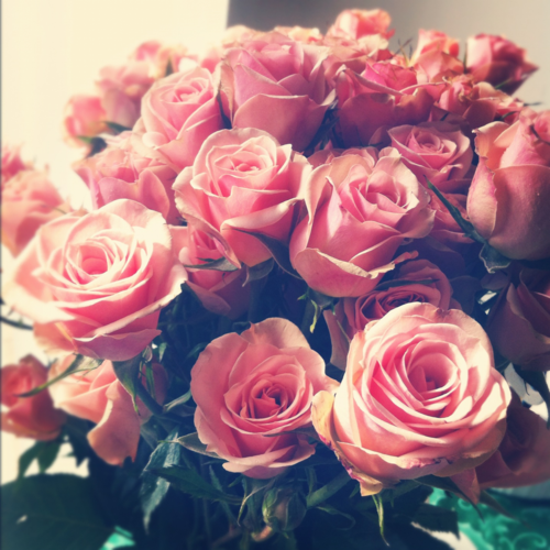 Pink roses tumblr uploaded by naira on we heart it mightylinksfo