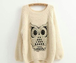 fashion, owl, and sweater image