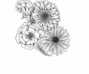 drawing and flowers image