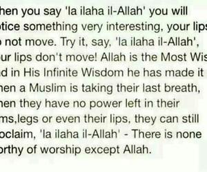 allah, death, and islam image