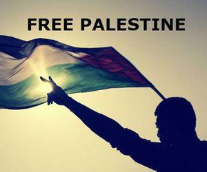 freedom, Gaza, and palestine image
