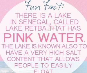 amazing, senegal, and pink water image