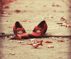 shoes, red, and photography image