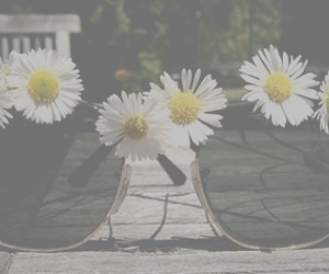 daisy, glasses, and vintage image