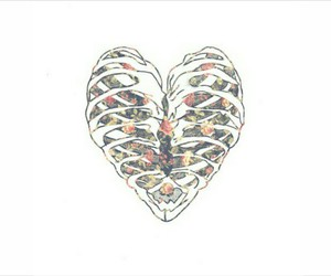 heart, background, and overlay image