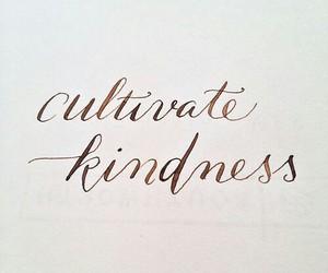kind, lettering, and kindness image