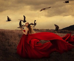 red, birds, and dress image