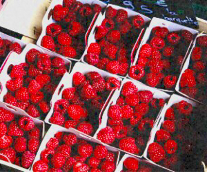 red, header, and fruit image