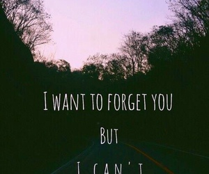 love, forget, and quotes image