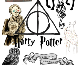 harry potter, hedwig, and voldemort image