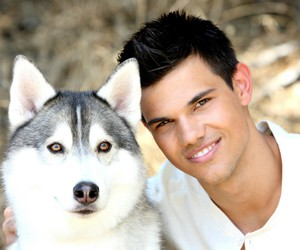 Taylor Lautner, dog, and taylor image