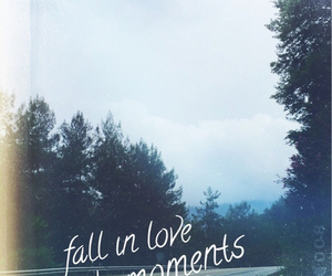 fall in love, street, and love image