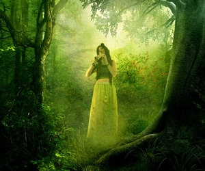 forest, green, and magical image