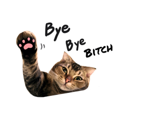 bye and cat image