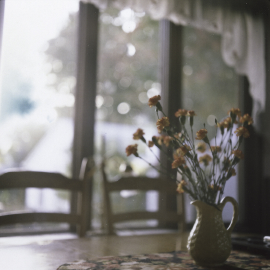 bokeh, dining room, and fashion image