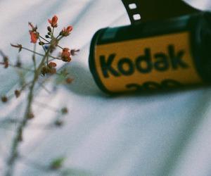 kodak | via Tumblr