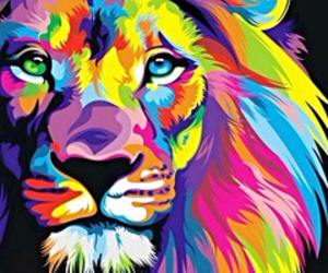 colors, lions, and wallpapers image